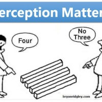 Perception Matters